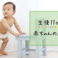 生後11ヶ月の赤ちゃんの成長