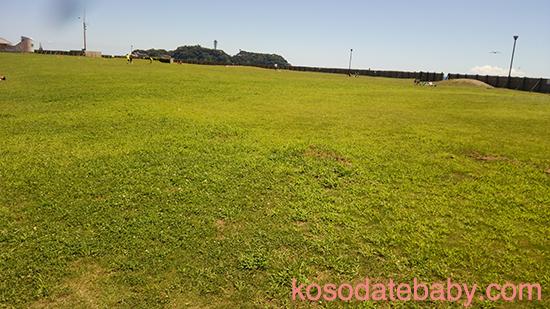 湘南海岸公園の芝生広場