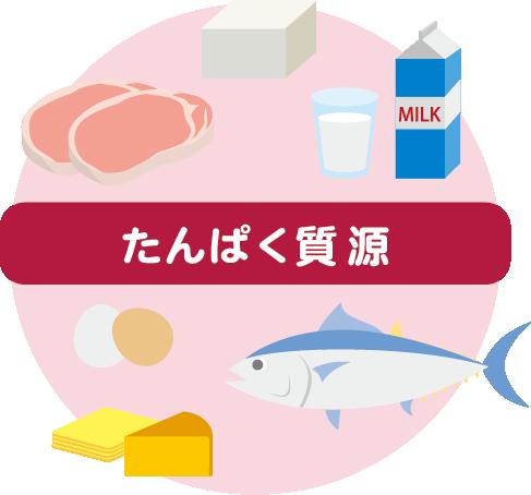 離乳食たんぱく質源