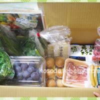 大地宅配「お試しセット」おいしいから子供が野菜をパクパク食べる!
