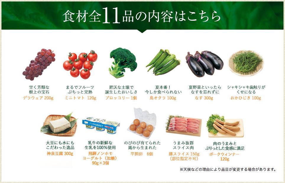 「大地宅配」基本の食材11品お試しセット
