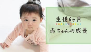 生後6ヶ月の赤ちゃんの成長